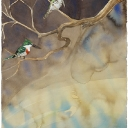 green-kingfisher-30x22-graphite-ink-colored-pencil-gouache-and-watercolor-wash-2009