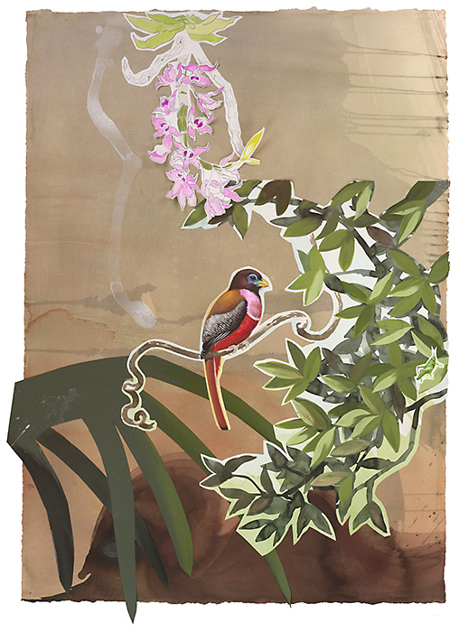 David Tomb. Philippine Trogon, 2012. 42 x 30, Watercolor, gouache on paper