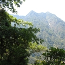 This was our welcome to he sierra Madre Del Sur and our first view up into the cloud forest of El Triunfo Biosphere Reserve from the eastern approach.