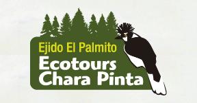 Ecotours Chara Pinta