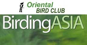 BirdingAsia