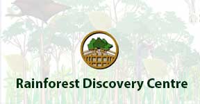 Rainforest Discovery Centre