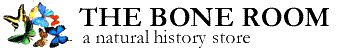 Bone Room logo