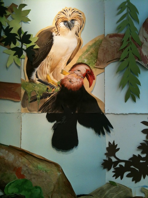 Philippine Eagle wall collage