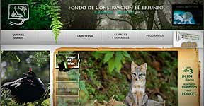 El Triunfo Biosphere Reserve and Foundation