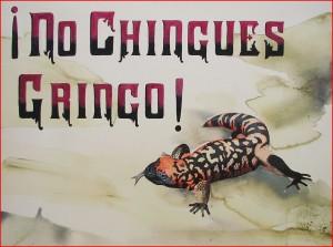 No Chingues Gringo