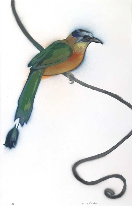 "Blue-crowned Motmot, 23"" x 14.5"", $1,400"
