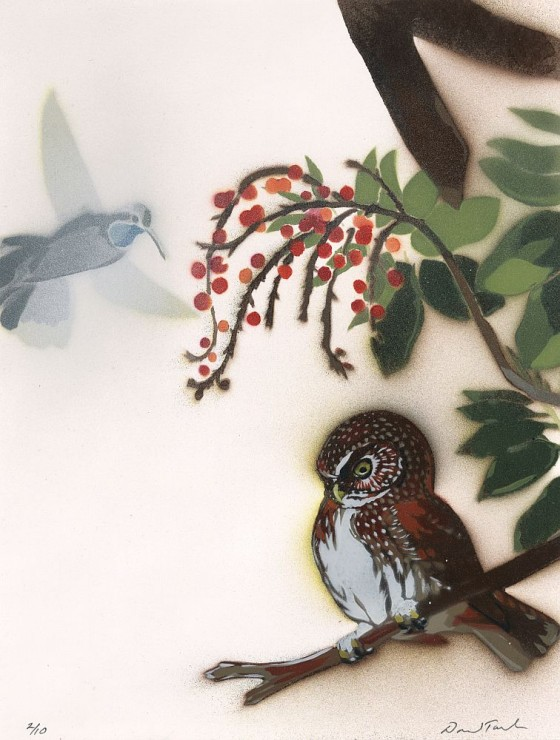 "Mountain Pygmy-Owl & Blue-throated Hummingbird, 12 1/8"" x 12.5"", $1,000"