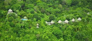 Main lodge and bungalows in the rainforest