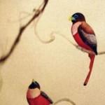 Bird Nerd, feature
