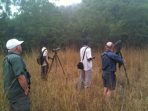 Doug, Isaac, James, and Brian, looking and listening for owls and turacos at Shai Hills