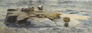 Eiders on a rock, 1907, Thiel Gallery, Stockholm, oil on canvas