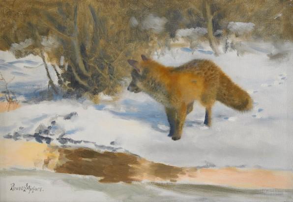 Fox, oil on canvas
