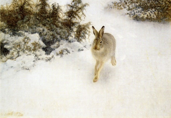 Winter Hare, 1908, Private Collection, oil on canvas,