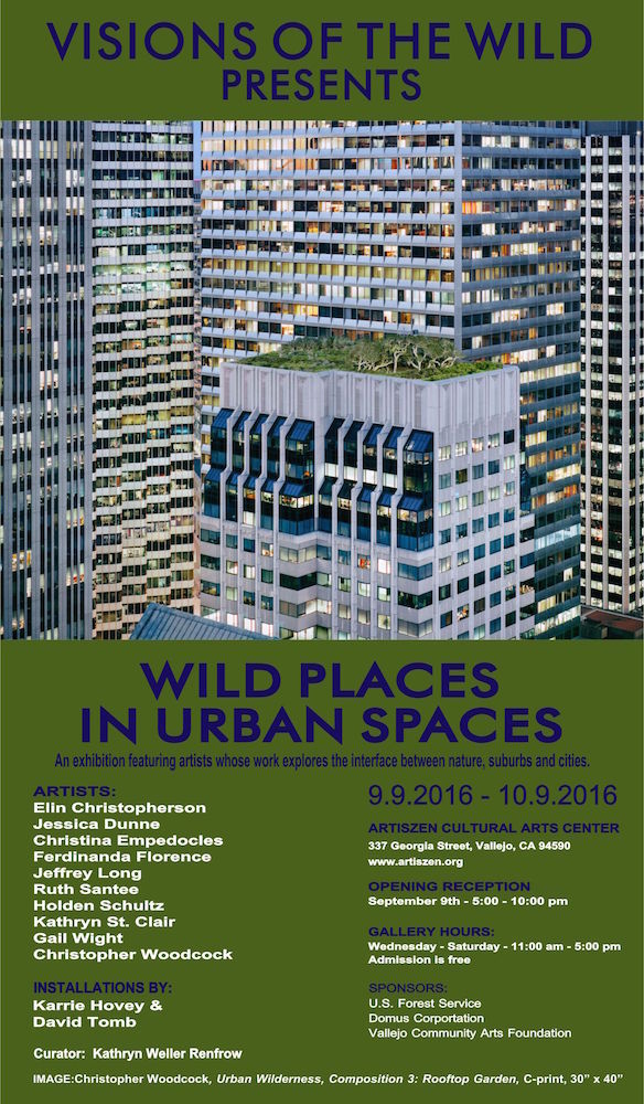 Wild Places in Urban Spaces